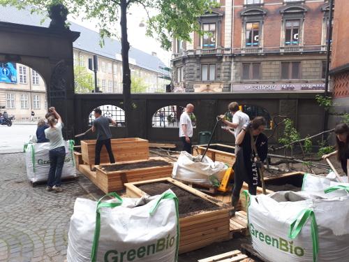 Fem personer er i gang med at anlægge have