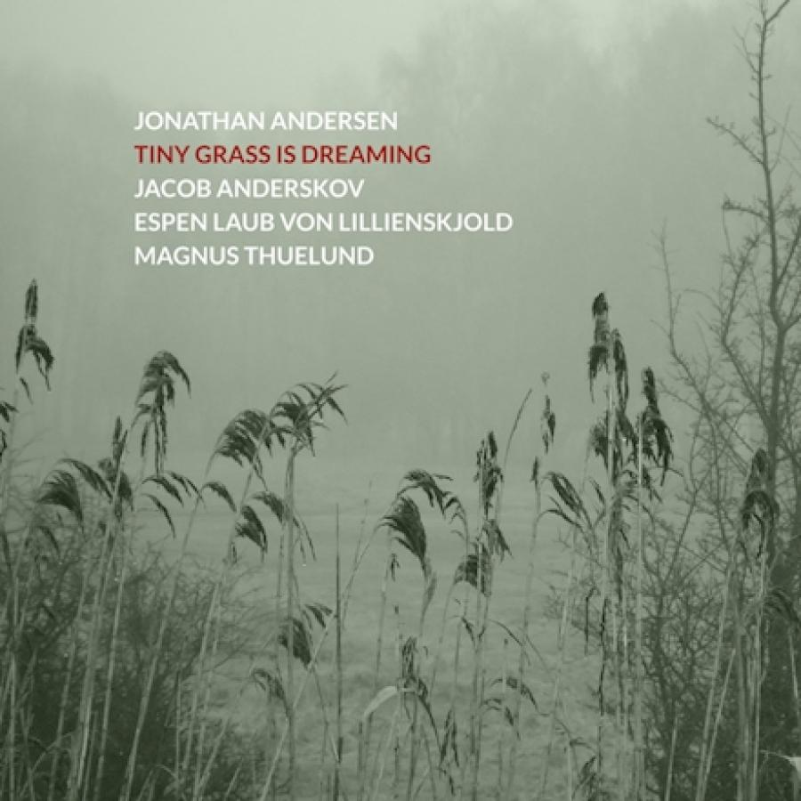 "cover til Jonathan Andersens ""Tiny grass is dreaming"""